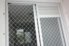Fotos de redes para proteção de animais.